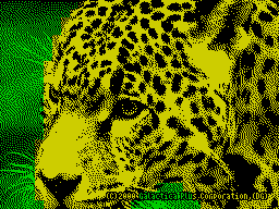 [screenshot of Leopard]