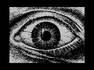 [screenshot of Eye 2 Eye]