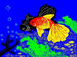 [screenshot of Fishs]
