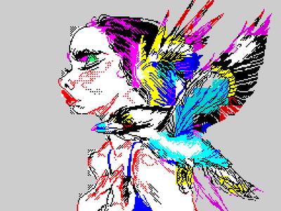 [Screenshot - Kookaburra]