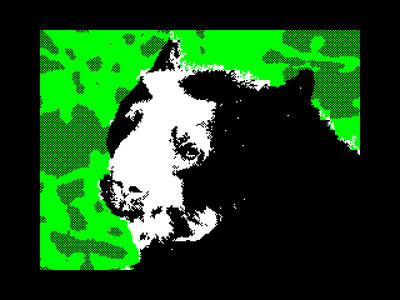[Screenshot - Bear in Zoo]